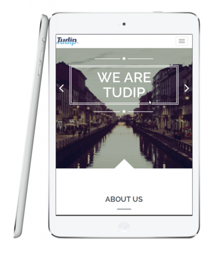 about tudip About Us